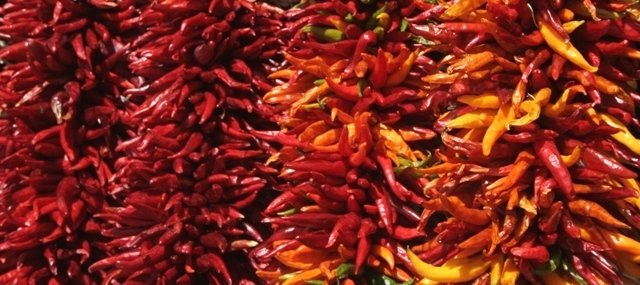 The land of hot chilies.