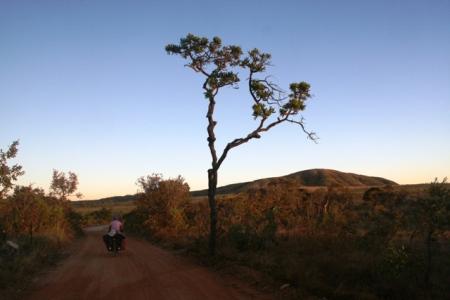 IMG_7083-cactus-road