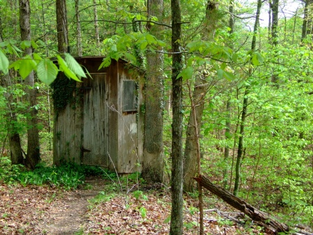 spring outhouse