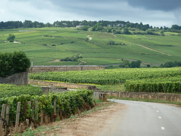 Top 5 Reasons to Cycle France