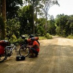 Into the jungle: biking Borneo gets better (and worse!)