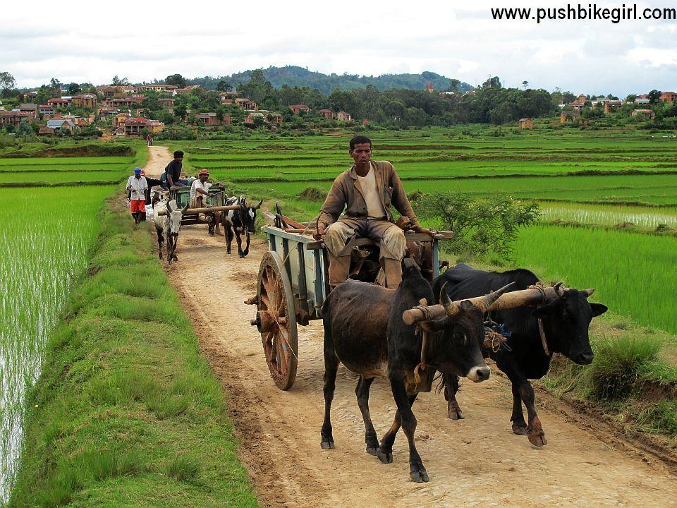 06 Madagascar Heike Pirngruber www.pushbikegirl.com