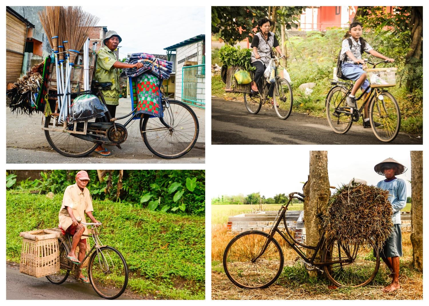 java cyclists collage small