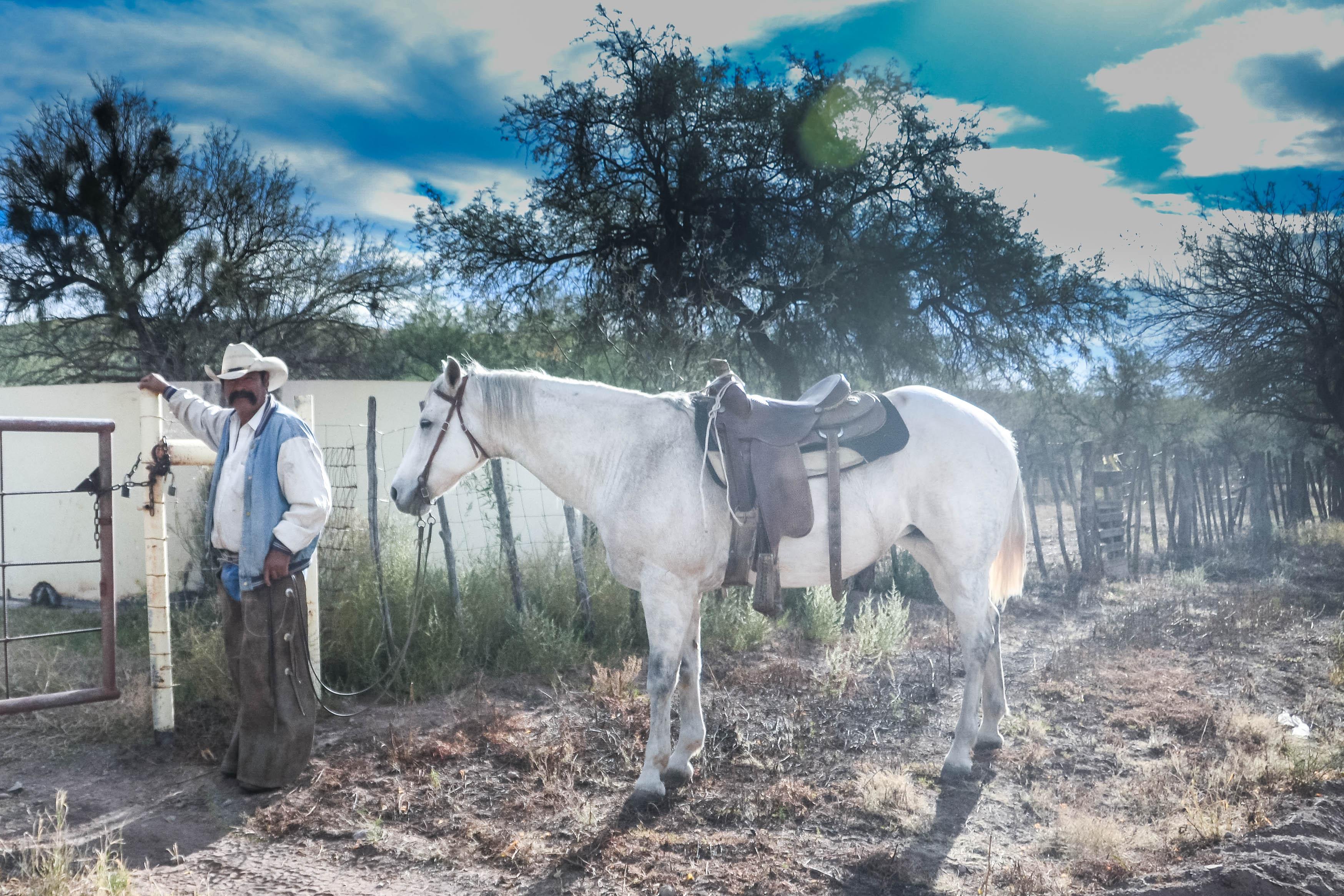 Arizona cowboy.