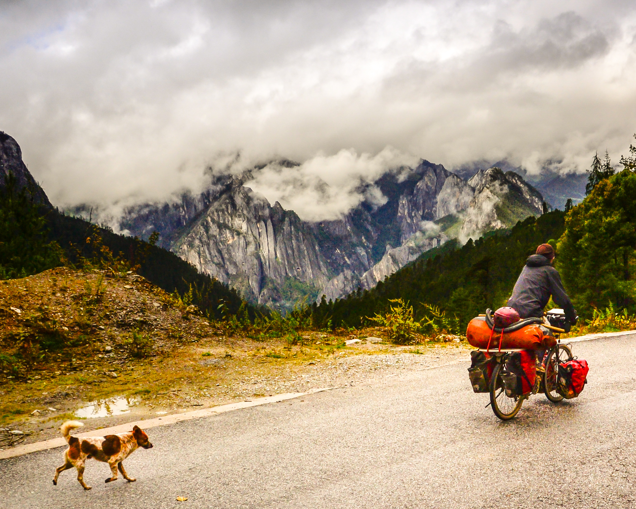 Bicycle touring with dog in China