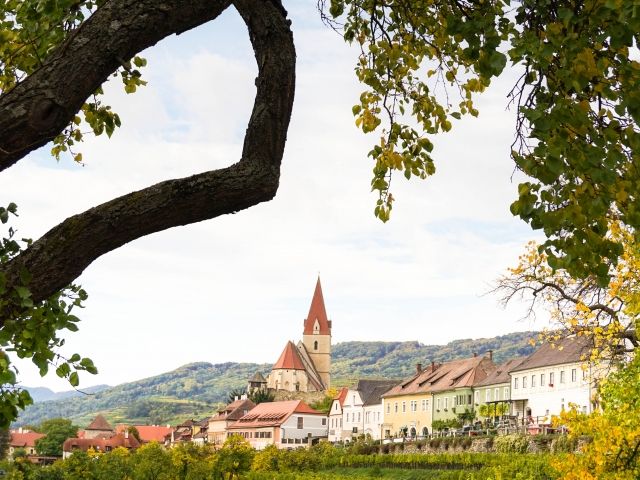 Austrian village with vineyards