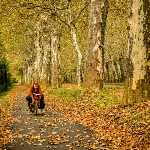 Cycling EuroVelo 15 Alsace France