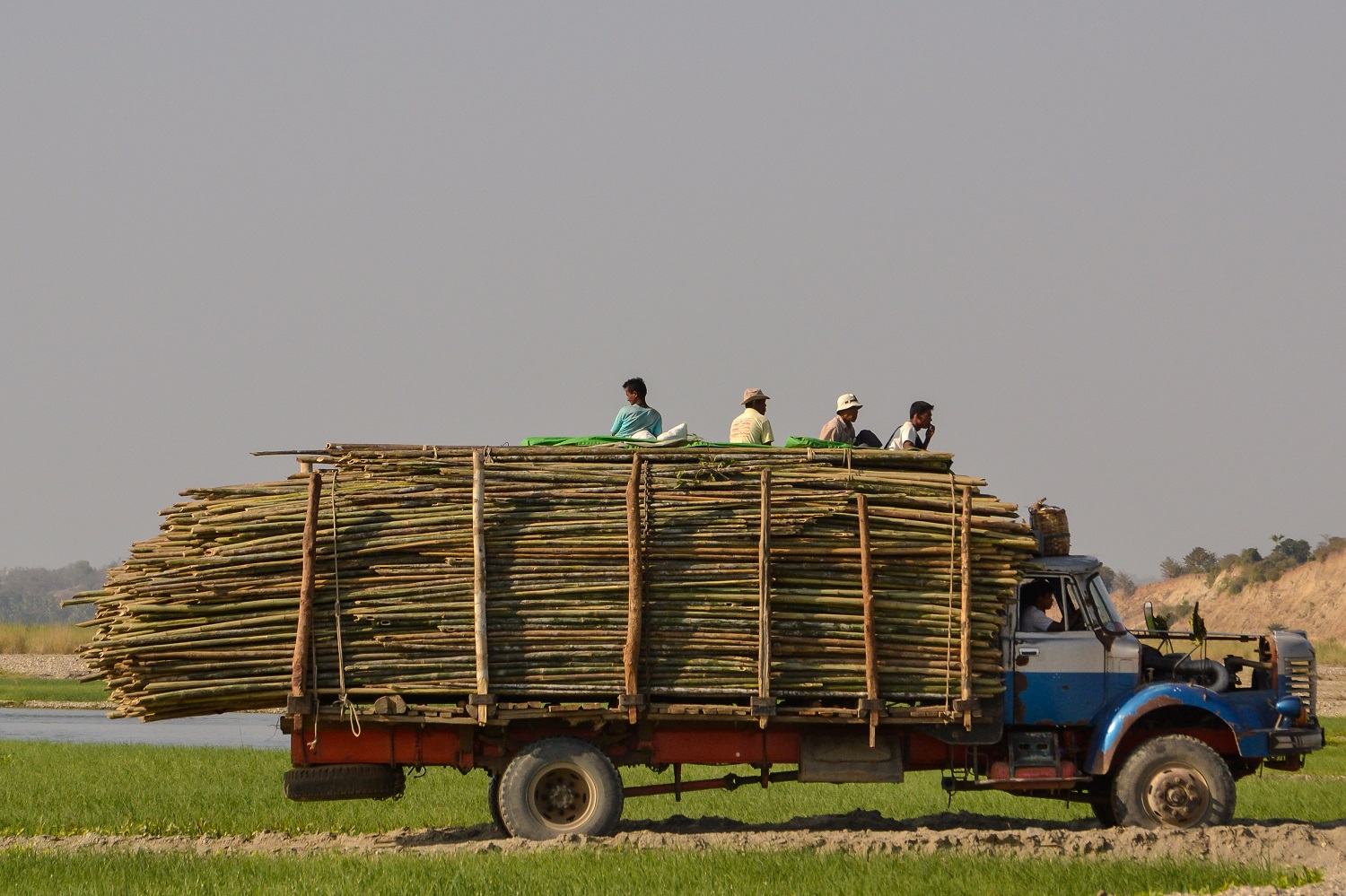 truck with bamboo